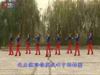 紫蝶广场舞纳西情歌_糖豆广场舞课堂2015云裳广场舞纳西情歌五三