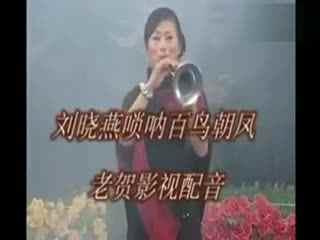 苏北民间小调视频