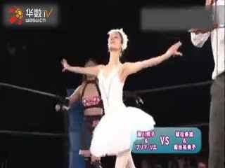 wwe女子摔跤之要害攻击