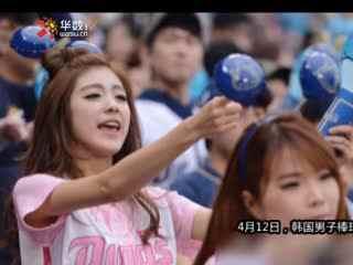 韩棒球宝贝粉嫩热舞 清丽美女高声助威