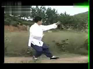 杨大卫讲解85式传统杨氏太极拳 杨大卫讲解传统杨式太极拳八十五式第图片