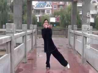 八段锦口令音乐:宿松刘太极八段锦演示(口令加文字)