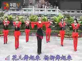 场舞今夜舞起来分解动作_广场舞今夜舞起来--华数TV