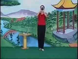 安徽民间小调全集搞笑新片 刘晓燕唢呐--华数T