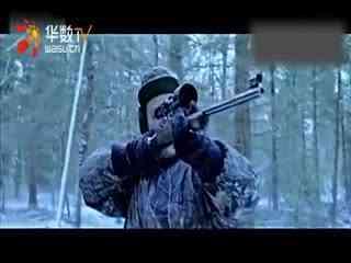 国外公益创意短片《打猎》图片