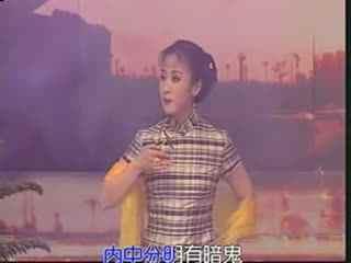 黄梅戏精彩唱段:八月中秋雨霏霏海报