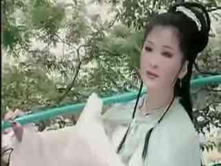黄梅戏精彩唱段:葬花海报
