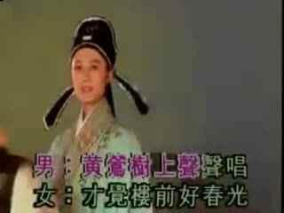 黄梅戏精彩唱段:黄莺树上轻轻唱海报