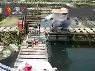 钓鱼视频视频日溜鱼教学钓鱼教程--技巧TV比基尼视频华数v视频图片