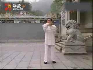 赵幼斌85式太极拳口令mp3格式 谢谢!图片
