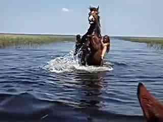 比基尼美女在水中骑马