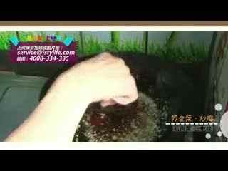 爱时代生活频道-时代广场-美食菜私房视-炒鸡-花上电格桑国际美食节图片