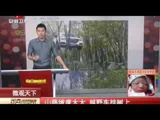 温州车挂树上_实拍越野车挂树上华数TV
