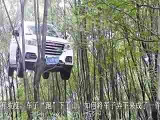 温州车挂树上_