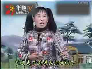 红楼梦主题曲插曲全集_4