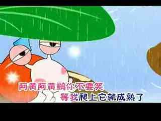 儿童歌曲华数黄鹂与大全鸟儿歌玫瑰蜗牛--盒子大全视频教程图片