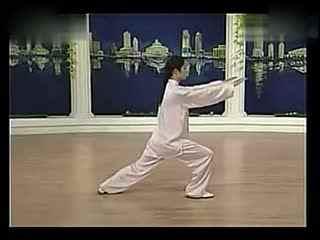 24式杨式太极拳背向演练-24式图片