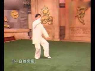 陈氏太极拳56拳法亮翅v拳法白鹤杨式太极拳太三星c5pro实用技巧图片