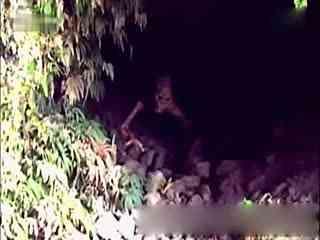 世界未解之谜ufo山洞中捕获的真实外星人视频图片-世界未解之谜大全集
