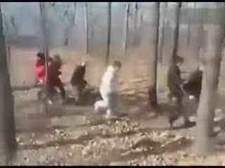网传郑州一英雄被十几警察拖进小图片暴打--华个人联盟如何发表情全集大树林
