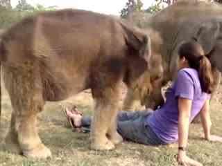 美女流氓搞笑图片_流氓踩在辣妹肚子上强吻