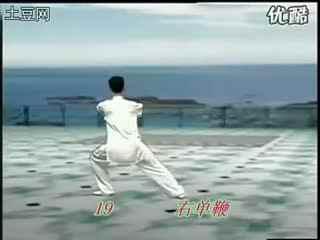 杨静太极拳48式视频_陈思坦四十八式太极拳背向演练视频 太极拳