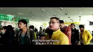 藏大学食堂唱藏语版《喜欢你》走红