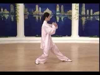 【陈思坦】世界太极拳冠军 演示杨式八十八式太极拳视频〔全套〕图片
