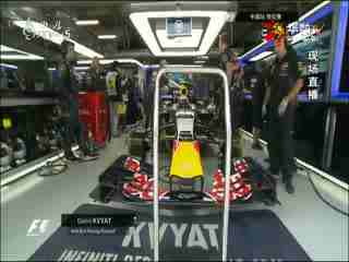 2015F1中国站:F1上海站2015排位赛