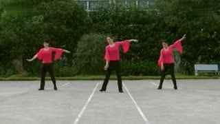 阿文贝贝广场舞教学:山里红