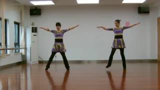 阿文贝贝广场舞教学:我来自草原