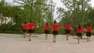 白埠靓丽广场舞教学:一物降一物