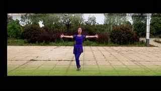 春英广场舞 跳到北京 背面分解