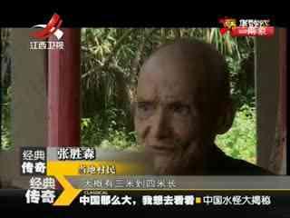 中国水怪大揭秘