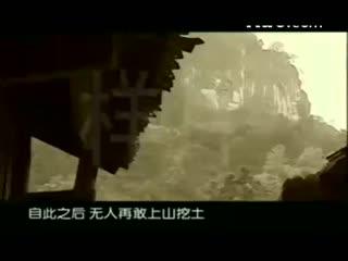 千年悬棺--华数TV