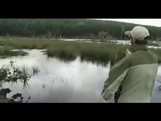 钓鱼技巧技巧钓鱼视频教学2--大全TV卖熟食华数图片