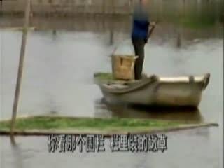 钓鱼视频野钓实战 钓鱼技巧 手竿钓鱼的问答