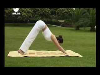 玉珠铉视频减肥瑜伽初级快速瘦腰瘦肚子瘦腿减肥热量每天的摄入图片