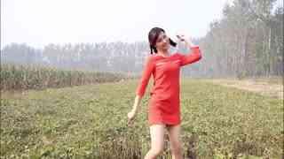 微小微广场舞:上海之恋(欣赏)