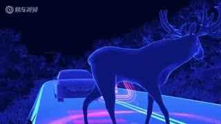 2016款沃尔沃S90 动物识别系统演示