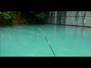 钓鱼钓鱼冬季入门技巧野钓实战钓鱼玩法钓鱼彩虹圈的技巧视频教学视频教学图片