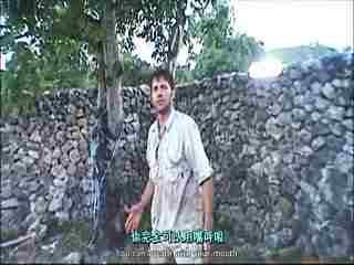 实拍视频野猪吞吃视频解剖一条吃了头巨型的力工蟒蛇图片