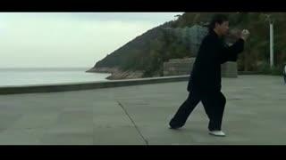 杨氏太极拳24式传统分解动作大灯视频杨氏102015款艾瑞泽7教学详解图片