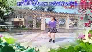 荷花阿萍广场舞 花桥流水