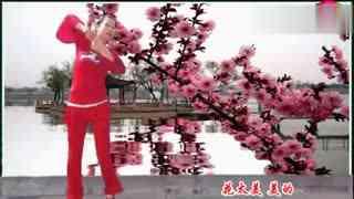 安庆小红人广场舞 小河淌水