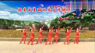 安庆小红人广场舞 贼溜溜的情歌