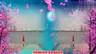 安庆小红人广场舞 草原情妹妹