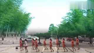 安庆小红人广场舞 脚步舞