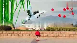 安庆小红人广场舞 鸿雁飞飞
