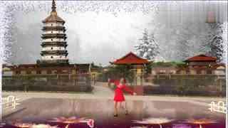 安庆小红人广场舞 梦中的雪莲花